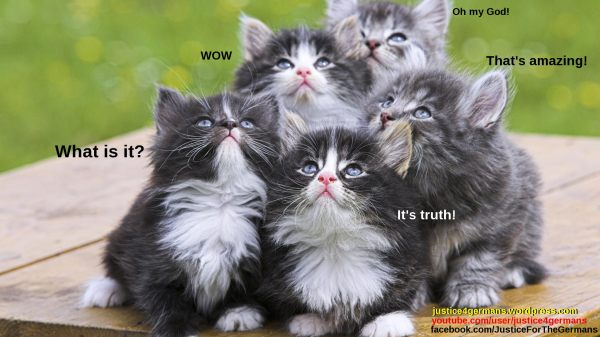 Kittens_truth_0