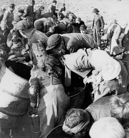 Starving Germans Digging Through Garbage