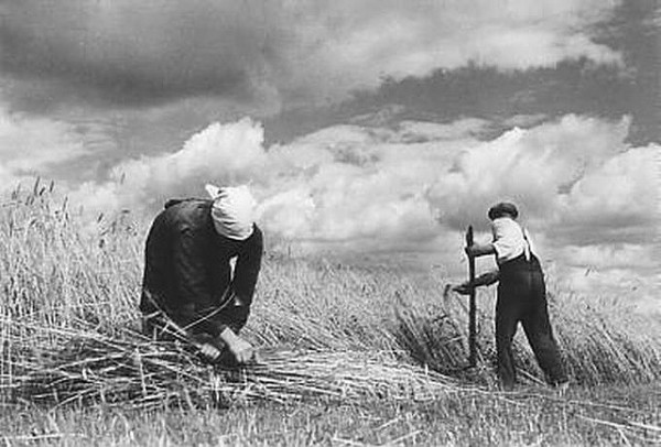 East Prussia - farmers in field